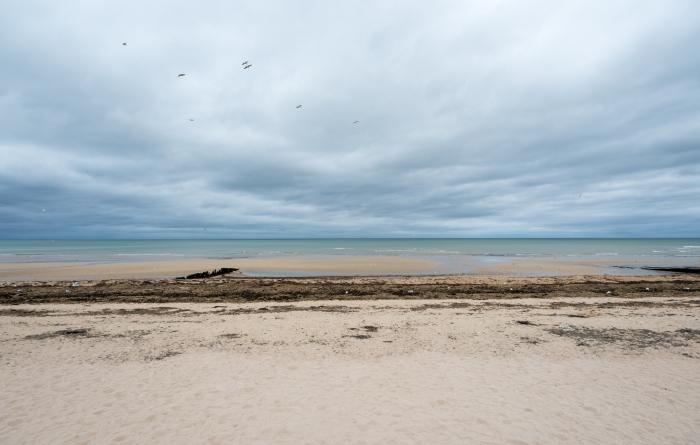 Juno Beach-3956